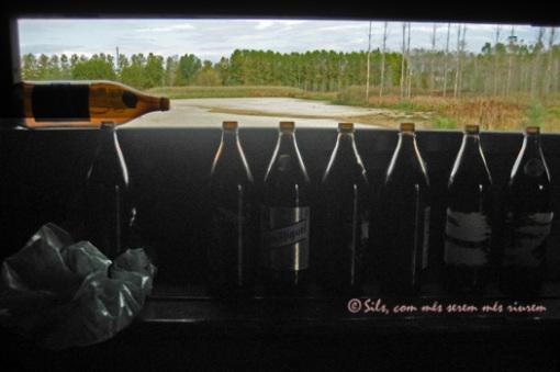 botellonalsestanysdesils